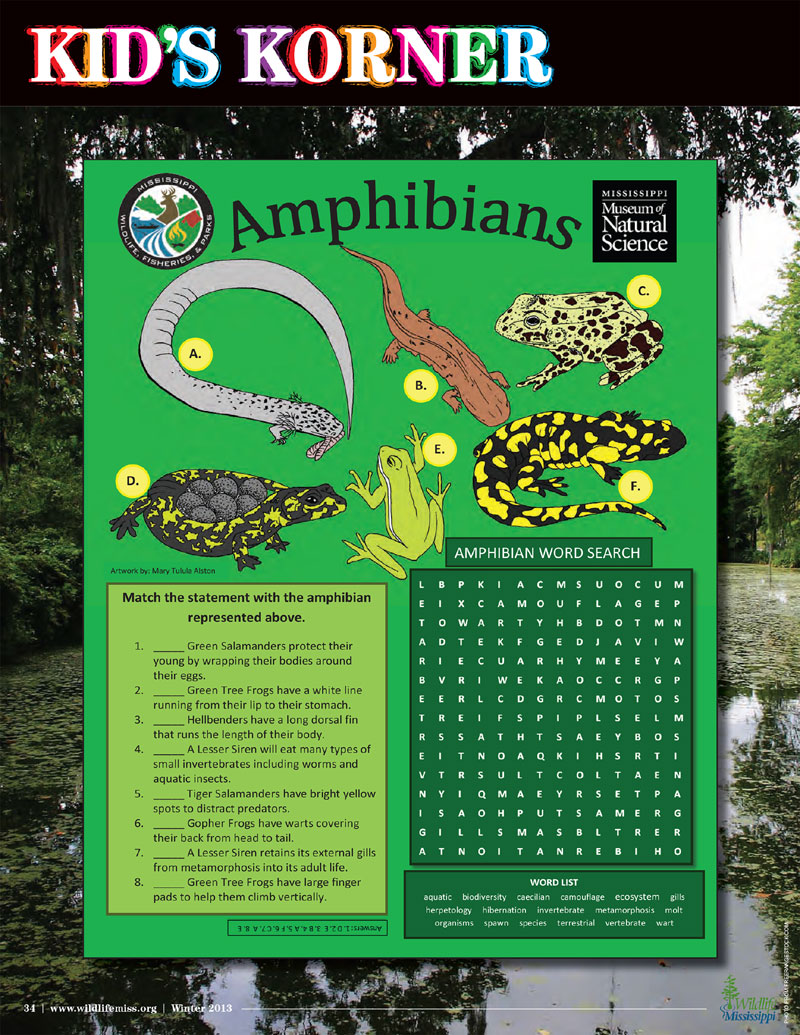 Wildlife Mississippi Magazine Regularly Publishes Wildlife Focused Activity  Sheets For Kids. They Are Prepared By The Mississippi Museum Of Natural  Science ...